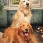 Caley & Gretta